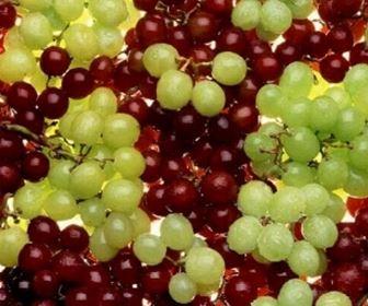 Olio e vino - Calorie uva bianca da tavola ...