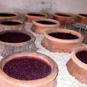 fermentazione vino rosso