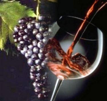 bottiglia vino da tavola