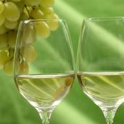 calice vino bianco