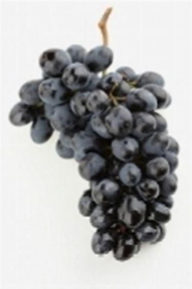 grappolo d'uva2