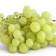 Grappolo d 39 uva curiosit uva - Potatura uva da tavola ...