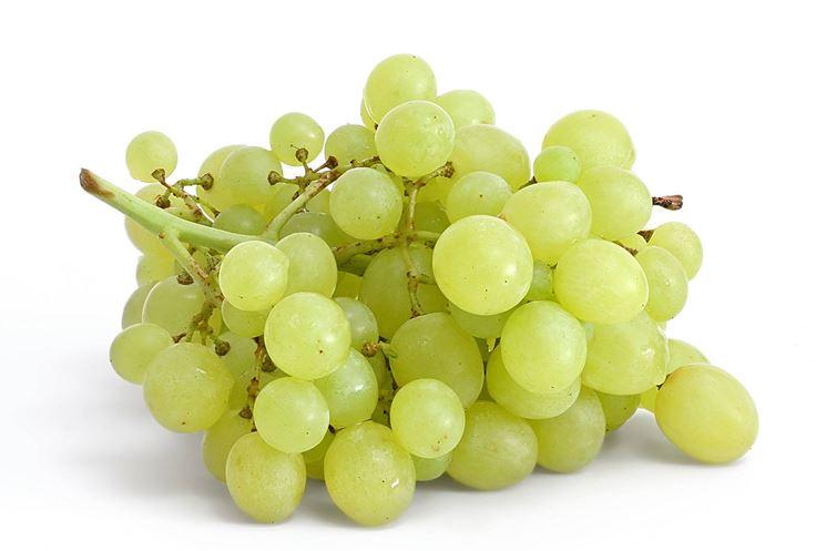 Potatura uva da tavola - Curiosità uva