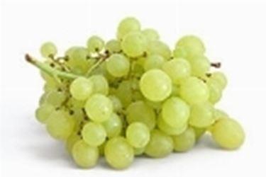proprietà uva2
