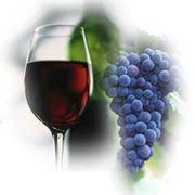 prezzo uva da vino al quintale