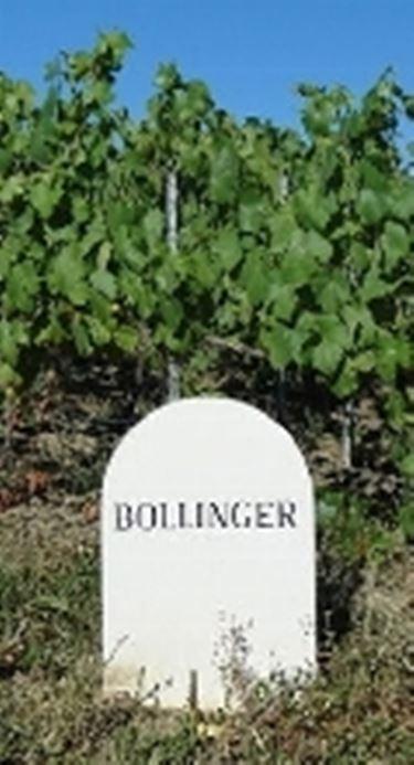 champagne bollinger prezzi2