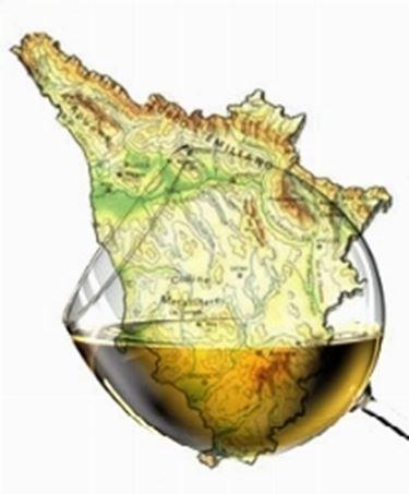 Vino bianco toscano