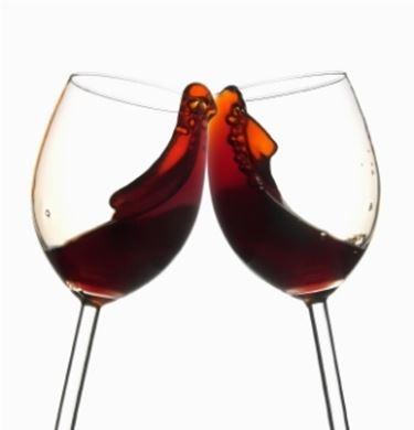 Vino rosso marche